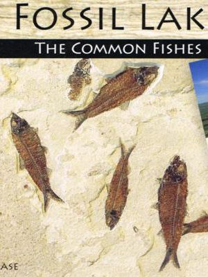 Fossil Lake: The Common Fishes on INHAweb.com #685
